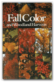 Fall Color Trees and Woodland Harvest