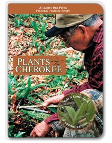 Plant and the Cherokee